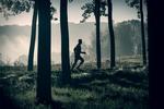 fot. MT_bieganie_jesień